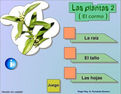 plantas02